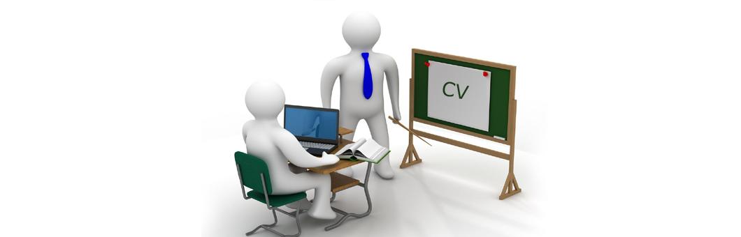 School leaver CV profiles